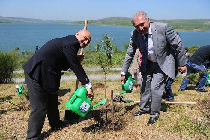 Cihan'ın Ormanı bu sene Başakşehir'den