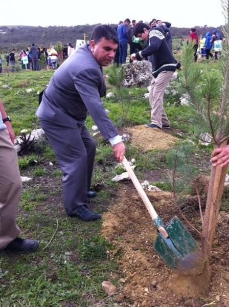 başakşehir belediyesi orman haftası