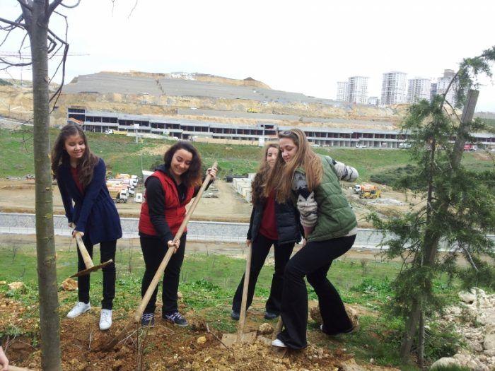 Okul Çevreleri Ağaçlandırılıyor