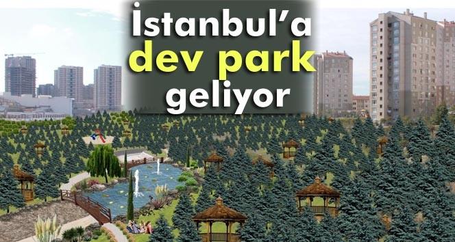 Kayaşehir'e dev park ne zaman yapılacak?
