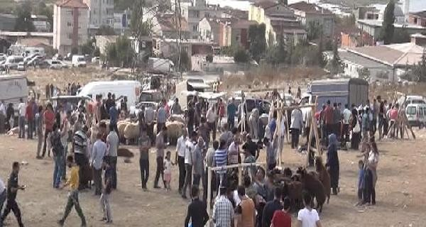 İstanbul Başakşehir'de Kaçak Kesim Yapıldı