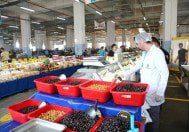 denetleme pazar gıda