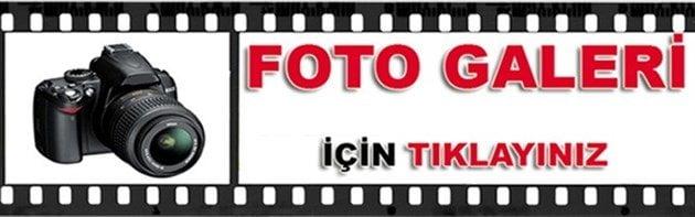 foto link