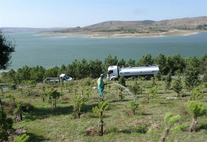 Sazlıdere barajı yeşillendiriliyor