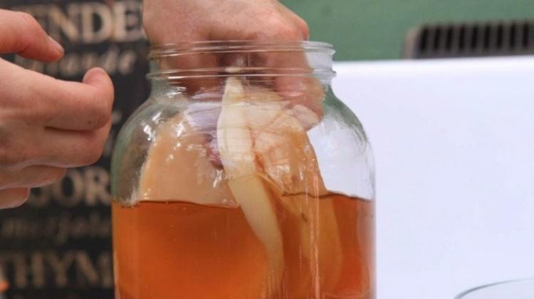Kombu Çayı nedir? Kombu Çayı'nın faydaları