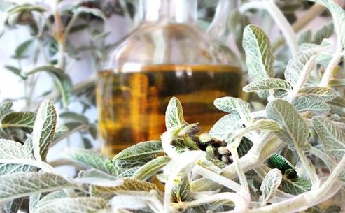 Boğaz ağrısına ne iyi gelir? Bitkisel çözümler…