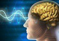 Temporal lob epilepsi nedir? TLE hastalığının başlıca özellikleri