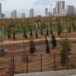 Başakşehir Kuzey Yakası Parkı Yeşillendi